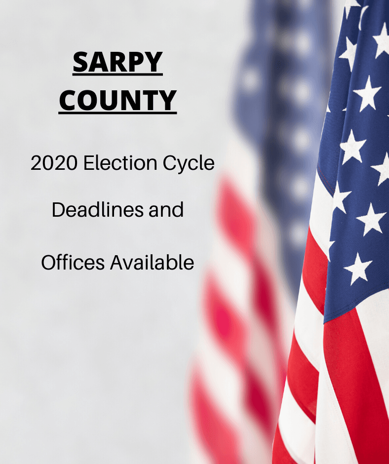 Website - 2020 Election