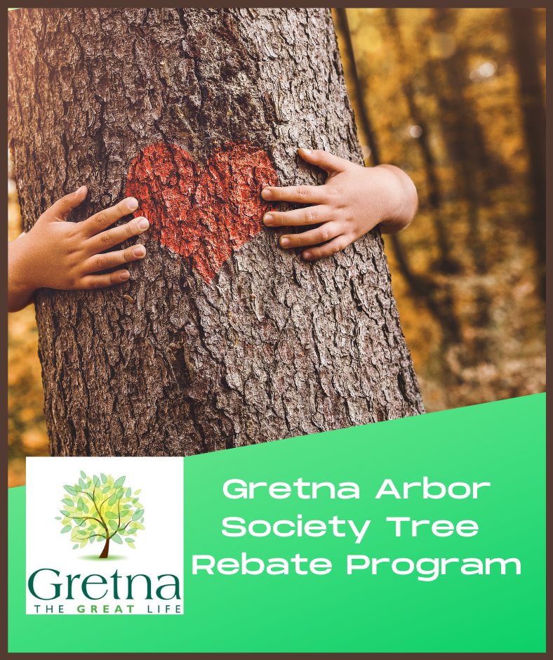 Website - Arbor Rebate